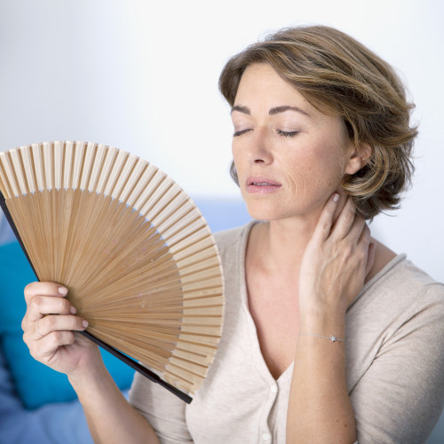 Hot Flashes / Menopause